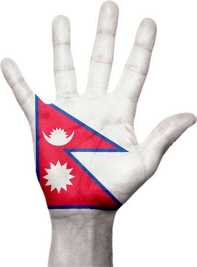 Nepalese Flag on Palm